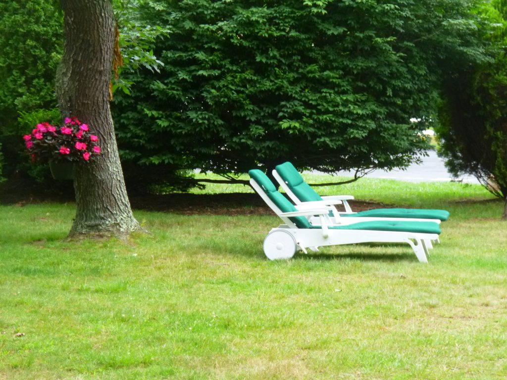 A pair of chaise lounges on the lawn