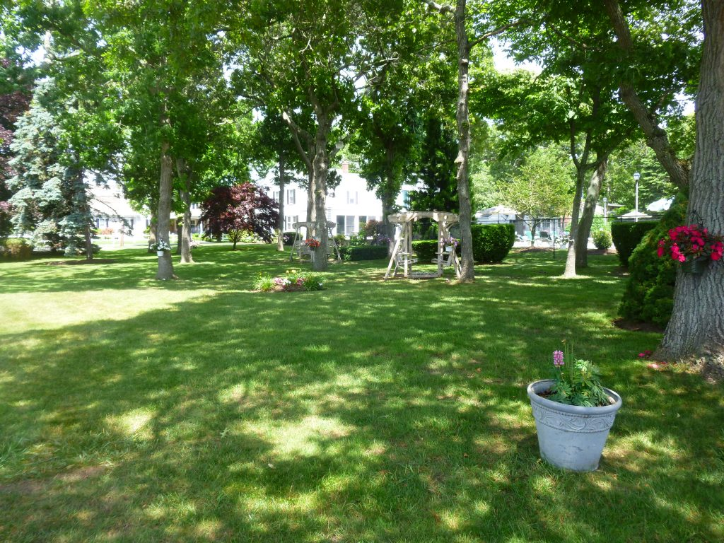 The shaded grounds of Falmouth Heights Motor Lodge with plants and wooden swings