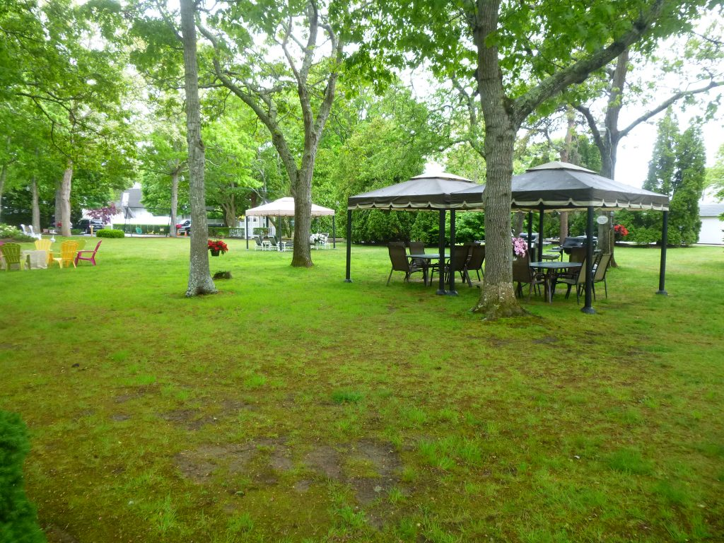 Gazebos with chairs and tables under the trees