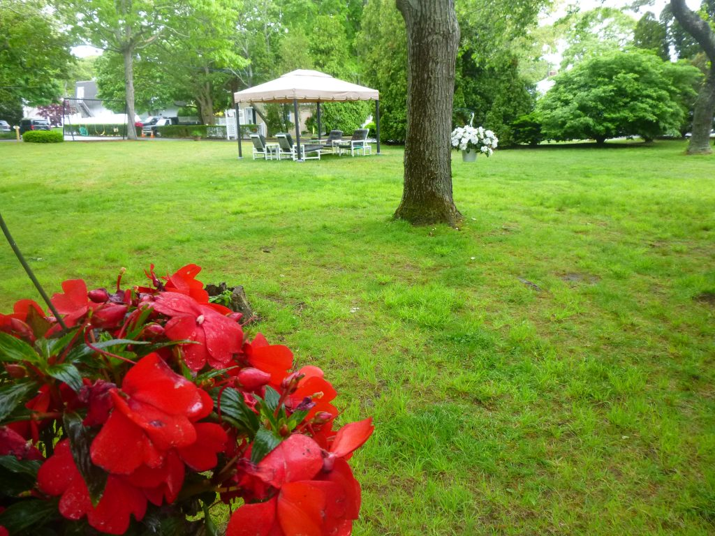 Hanging flower baskets and a gazebo